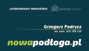 Grzegorz Pedrycz